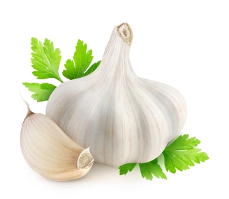 Garlic and parsley isolated on white