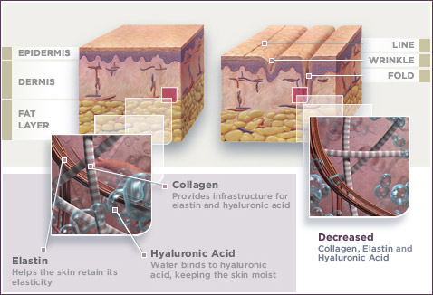 kolagen skin