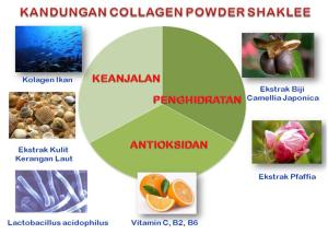 kandungan-collagen-powder