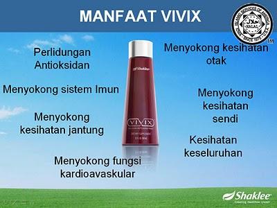 VIVIX 3